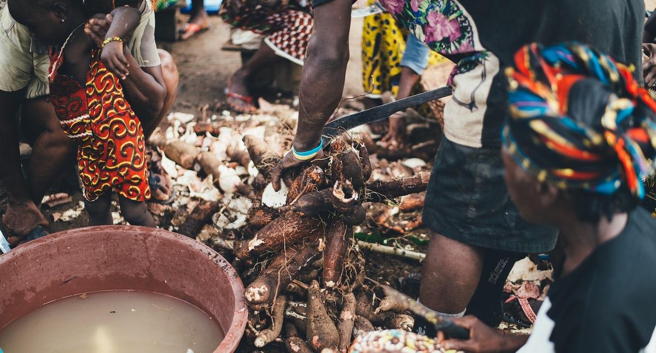 Annie spratt - cassava